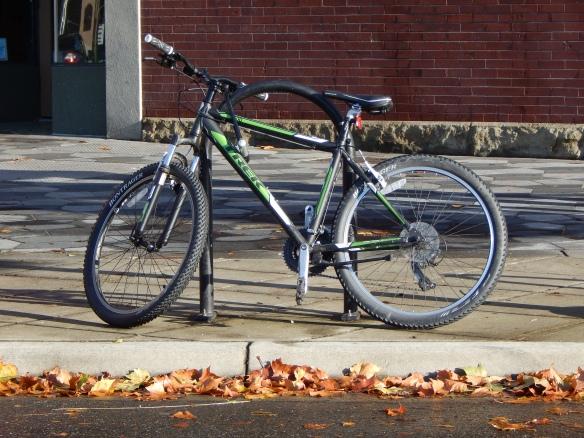 random bikepic~25